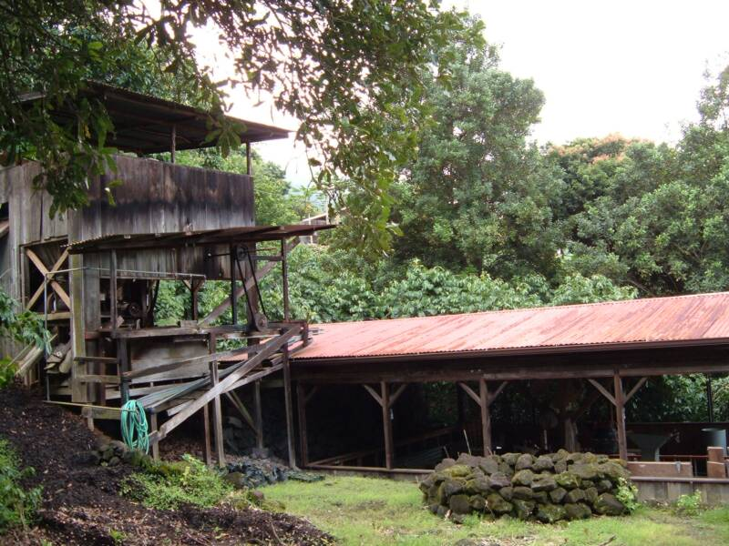 Kona coffee pulping mill and Sun dry deck